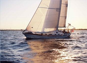 Sailing, Parrot Eyes